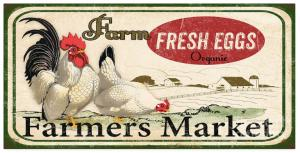 Artist Jean Plout Debuts New Collection Farm Fresh Eggs